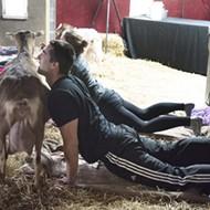 Goat yoga returns to Detroit