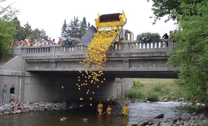 Rubber DuckyFestival, Aug. 12-18, Bellaire. - COURTESY PHOTO