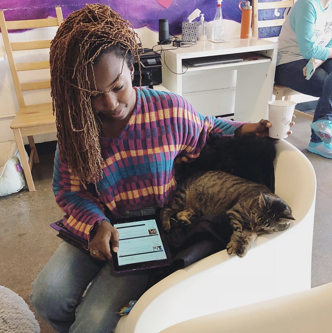 Looks like somebody found their furever home. - FERNDALE CATFÉ LOUNGE/INSTAGRAM