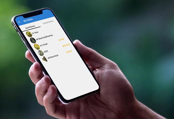 Cell phone app Weedi. - DENOVO STUDIOS