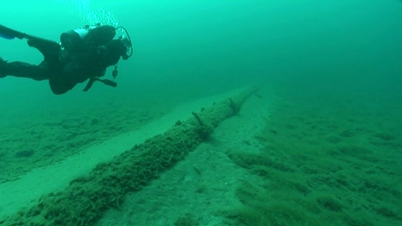 In 2013, the NWF sent divers to look at the straits pipelines, who found wide spans of unsupported structures, encrusted with exotic zebra mussels and quagga mussels. - NATIONAL WILDLIFE FEDERATION
