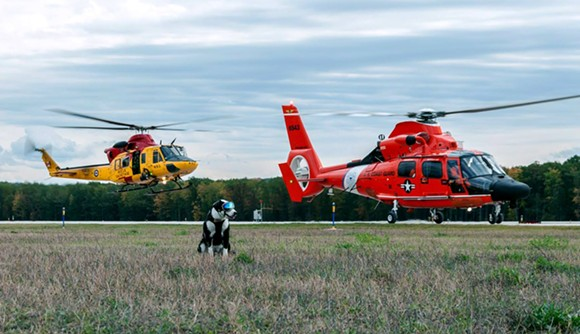 Wildlife Control from Air Station Traverse City - PHOTO VIA U.S. COAST GUARD FACEBOOK
