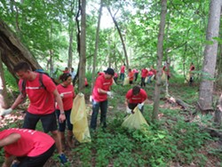 Quicken Loans volunteers pull 103 bags of garlic mustard at last year's Rouge Rescue. - PHOTO VIA FRIENDS OF THE ROUGE FACEBOOK PAGE.