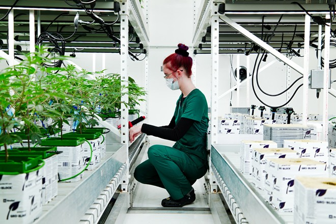 A woman working at Primitiv's facility. - COURTESY OF PRIMITIV