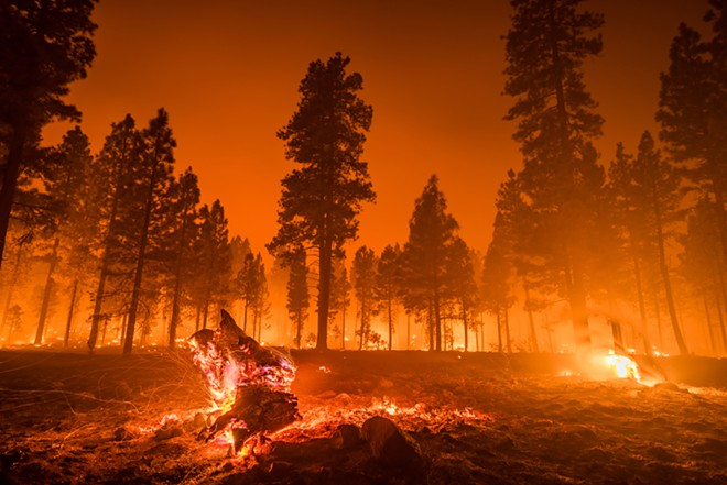 Step 1: Do nothing. Step 2: Watch the world burn. - SHUTTERSTOCK