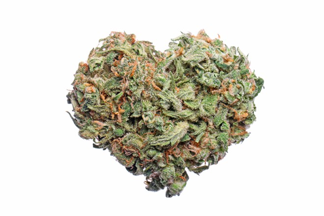 A new study found those who used cannabis within the past month were nearly twice as likely to have a heart attack. - SHUTTERSTOCK