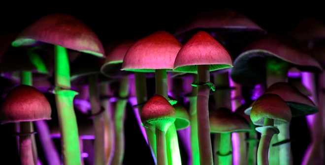 Michigan Sen. Jeff Irwin introduced legislation to decriminalize the use of psychedelics. - SHUTTERSTOCK.COM