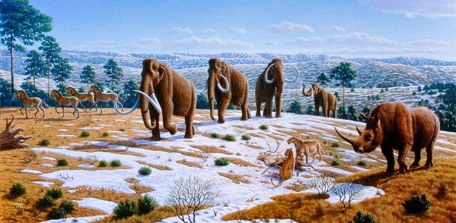A start-up called Colossal raised $15 million to attempt to resurrect the woolly mammoth — well, sort of. - MAURICIO ANTÓN/PUBLIC LIBRARY OF SCIENCE