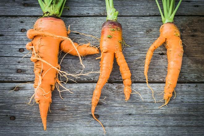 Misfit carrots. - SHUTTERSTOCK