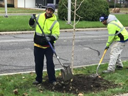 "Crews plant a tree in northwest Detroit as part of the ""10,000 Up"" program. - COURTESY PHOTO"