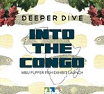 Deeper Dive: Into the Congo