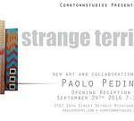 Strange Territory New Works and Collaborations by Paolo Pedini