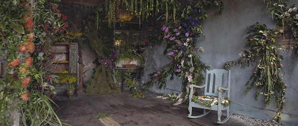 Welcome to Flower House, a living art installation in Hamtramck