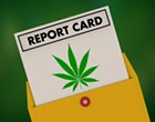 Industry scorecard for Michigan politicians shows cannabis support has become increasingly bipartisan