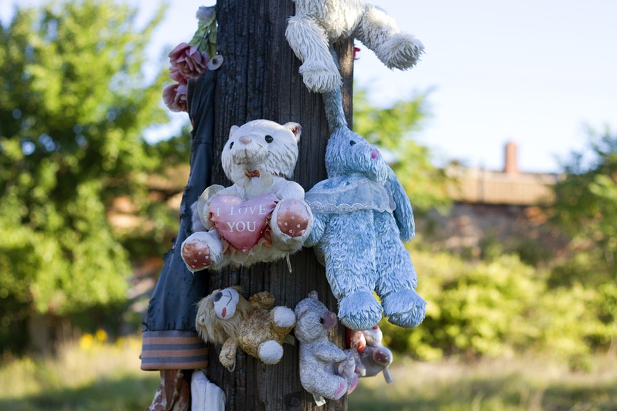 Stuffed animals hanging on a utility pole in a neighborhood near U.S. Ecology. - STEVE NEAVLING