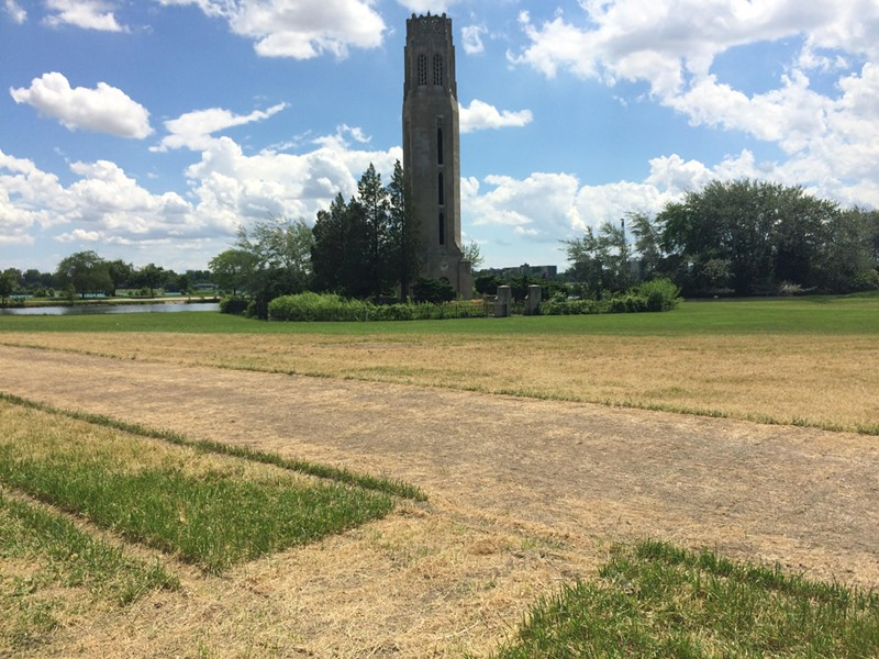 Grass torn up or killed by the Grand Prix. - PHOTO BY TOM PERKINS