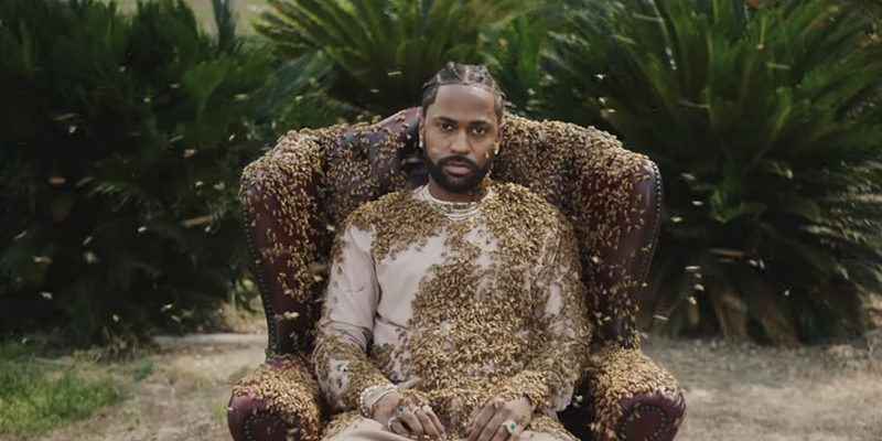 Big Sean is king bee in his latest video.