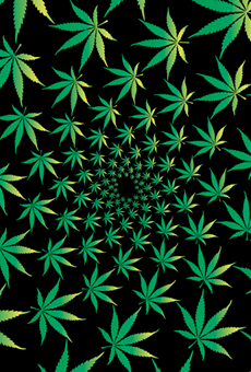 The symbolic power of the marijuana leaf