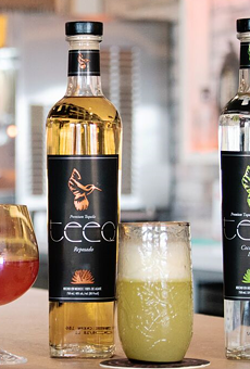 Michigan's Teeq Tequila is expanding to California, Florida