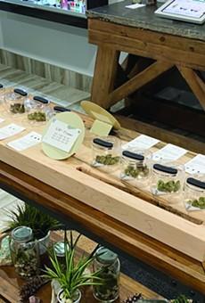 Skymint's White Cloud location begins recreational marijuana sales