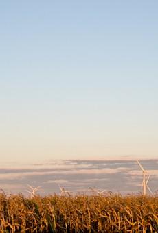 Windmill farm in Pigeon, Michigan.