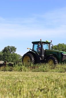 Royal Oak's Motor City Gas will now grow its own organic heirloom grain on an Ann Arbor farm