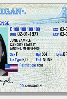 Lawmakers have introduced bills to grant access to ID cards and driver's licenses to undocumented immigrants multiple times in recent years, but the proposals have not been granted a hearing or vote.