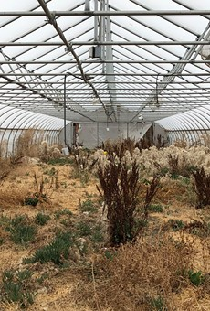 Can Detroit's RecoveryPark recover? (2)