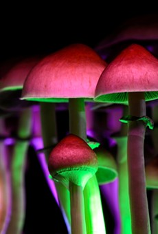 Michigan Sen. Jeff Irwin introduced legislation to decriminalize the use of psychedelics.