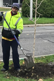 """Crews plant a tree in northwest Detroit as part of the """"10,000 Up"""" program."""