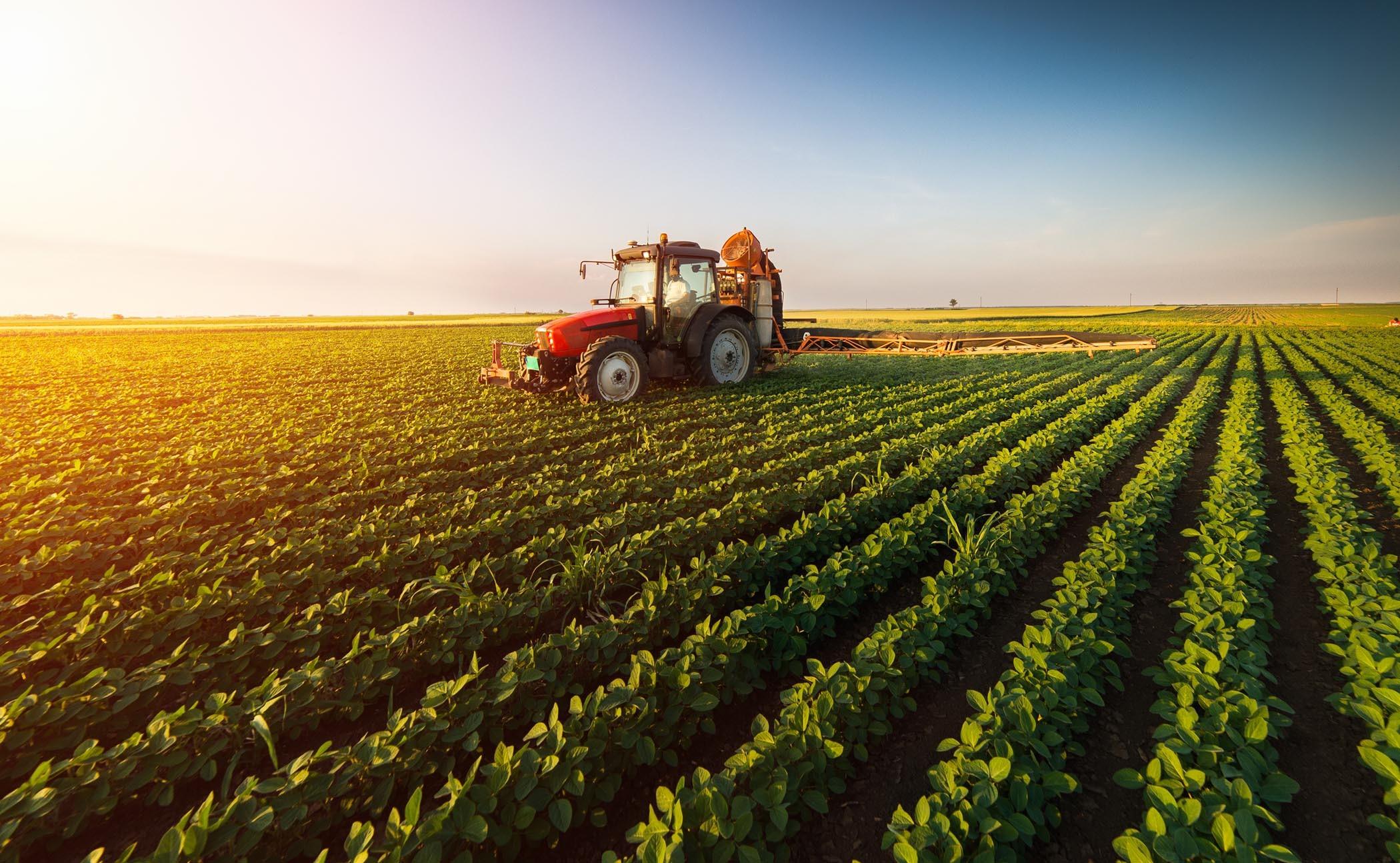 Trump's Chinese tariffs are screwing Michigan's farmers