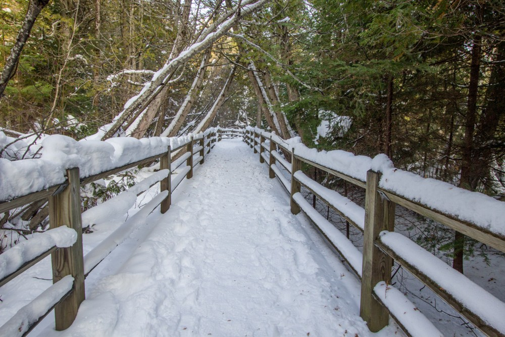 Michigan State Parks Are Free To Enter On Black Friday The Scene