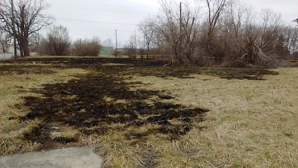 Scorched fields where a grass fire raged yesterday, north of Forest between St. Aubin and Dubois. - PHOTO BY MICHAEL JACKMAN