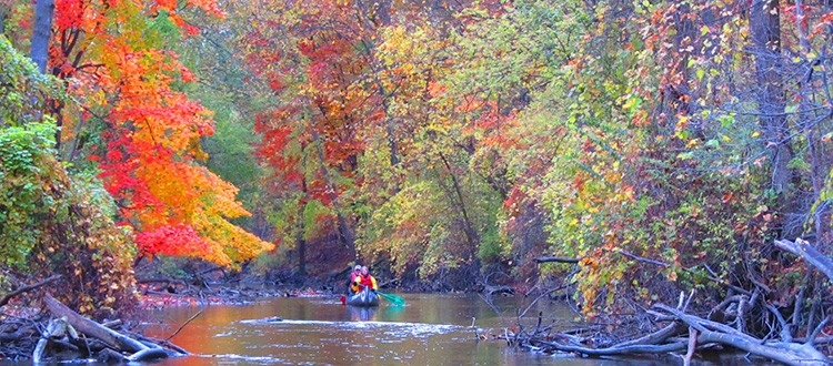 Thanks to Friends of the Rouge, you can have all the fall color you can handle without heading north of Wayne. - PHOTO FROM FRIENDS OF THE ROUGE RIVER TOUR WEBPAGE