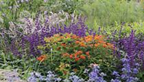 Piet Oudolf garden breaks ground on Belle Isle