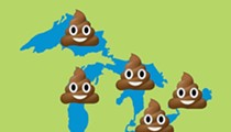 Report: Poop may make Michigan beaches unsafe for swimmers