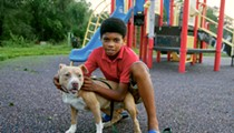 Detroit pit bull attacks shine light on owner negligence, enforcement