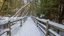 Michigan state parks are free to enter on Black Friday