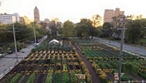 Detroit urban farm in first place to win $25k prize