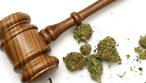 Petition rules could hold up Michigan legalization effort