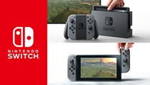 Nintendo Switch: One system, two functions