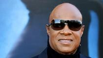 Stevie Wonder's new Joe Biden ad is a love letter to Michigan