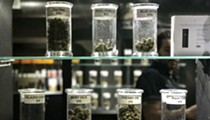 Detroit must stop processing recreational marijuana business licenses for now, judge orders