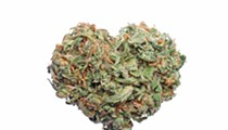 Cannabis use linked to higher risk of heart attacks in young adults, according to study