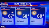 The internet loved Fox 2 Detroit's weather forecast this week