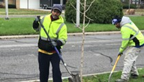 Detroit will plant 10,000 new saplings to replace trees wiped out by disease