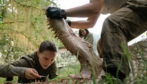 <i>Annihilation</i> challenges notions of identity and perception