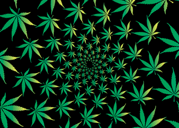 The symbolic power of the marijuana leaf
