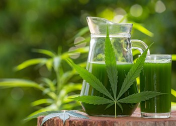 How To Detox THC From Your System Fast