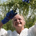How a Michigan-made marijuana testing company went national